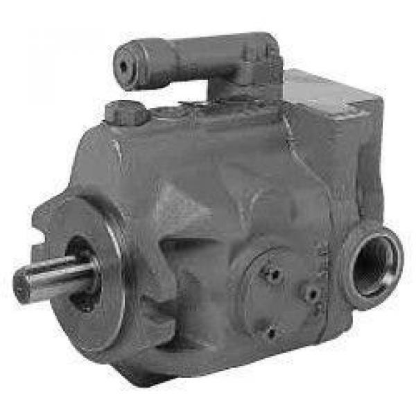 Rexroth hydraulic pump bearings F-217040.1