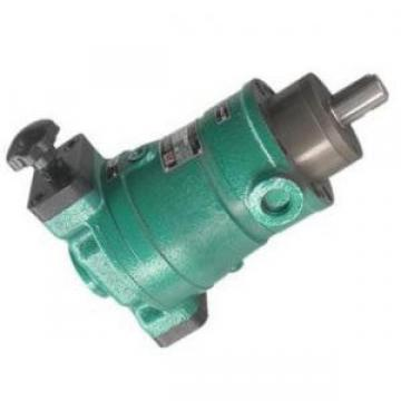Rexroth hydraulic pump bearings F-54293.01.NUKR